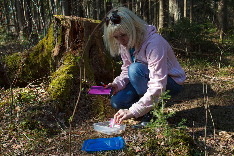 blond young woman opening up a plastic box in the forest that was left there as part of a geocaching game