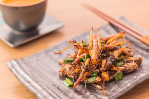 fried crickets on a small tapas plate with a tea cup in the background. Asian dinner setting with chopsticks