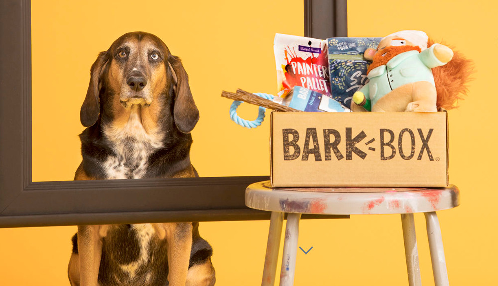 bark box affiliate signup page
