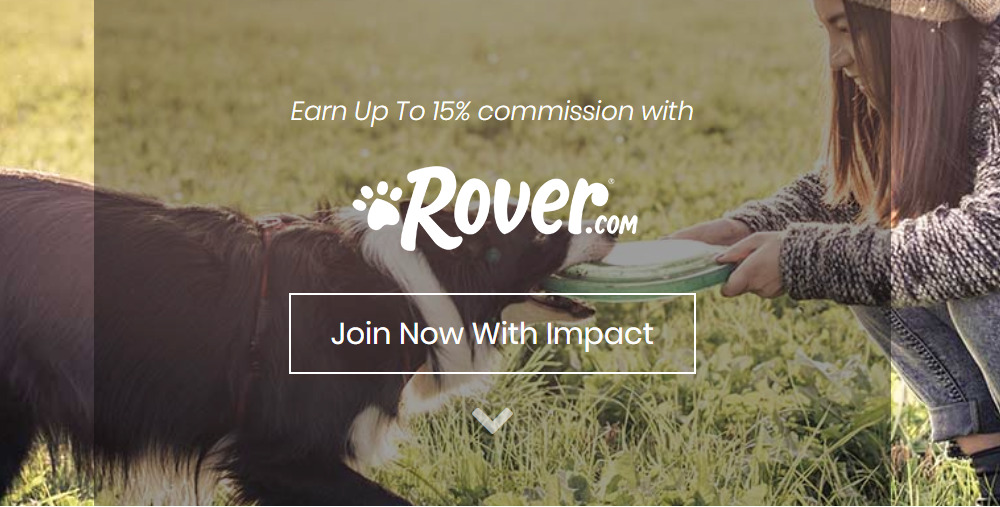 rover affiliate signup page