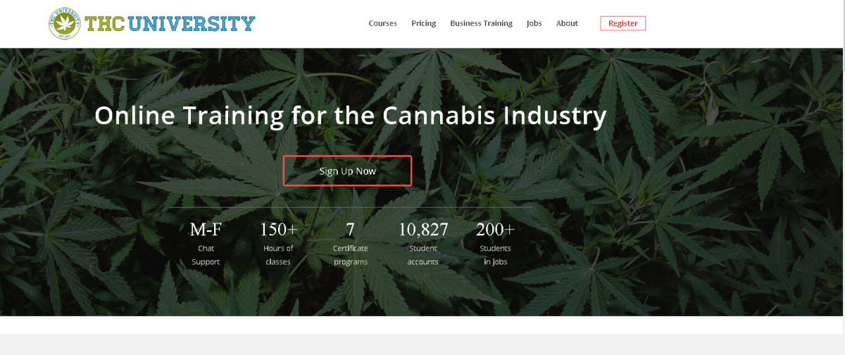 Screenshot of the THC University website home page with statistics showing there's over 150 hours of classes and 7 certificate programs. So far, over ten thousands students have studied here with over 200 students now jobs in the cannabis industry.