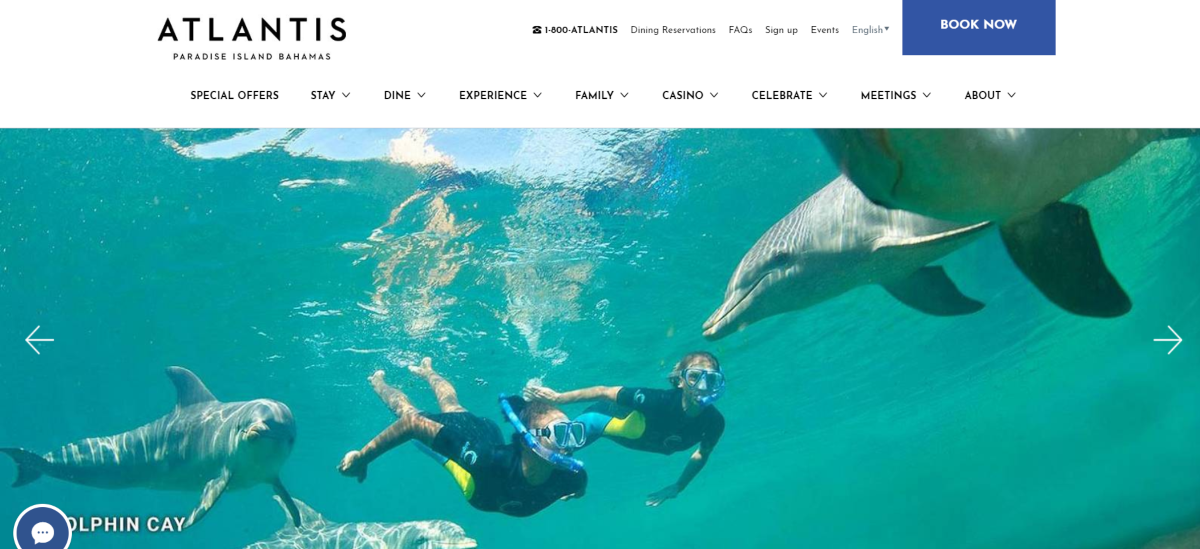 This photo is a screenshot of the AtlantisBahamas.com site showing a photo of people snorkelling with dolphins at Dolphin Cay, which is on the Bahamas resort.
