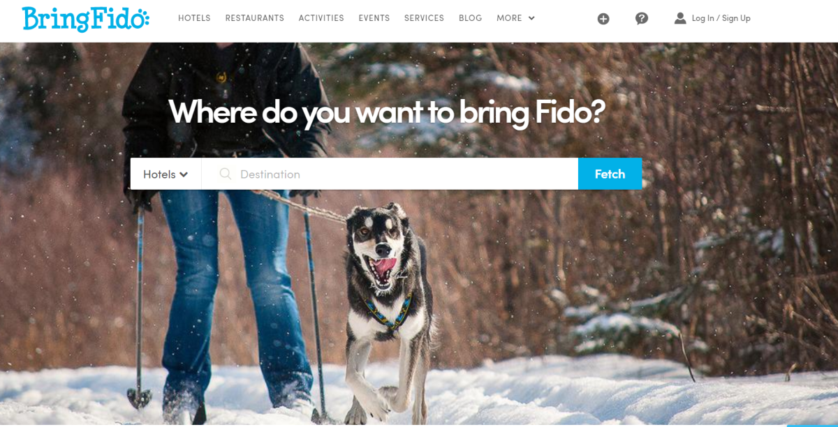 This is a screenshot of the Bringfido.com website where people can search for pet-friendly hotels to bring their dog or cat on vacation.