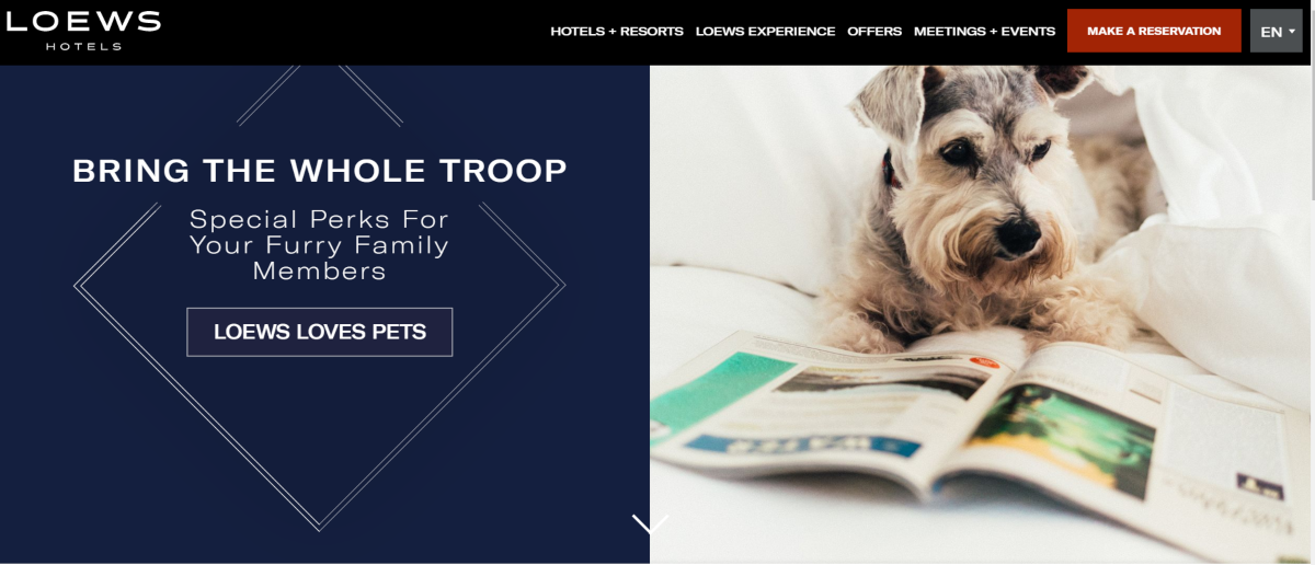 This is a screenshot taken from the Loews Hotels website showing they encourage families to bring the whole troop with special pet-friendly room deals for furry family members.