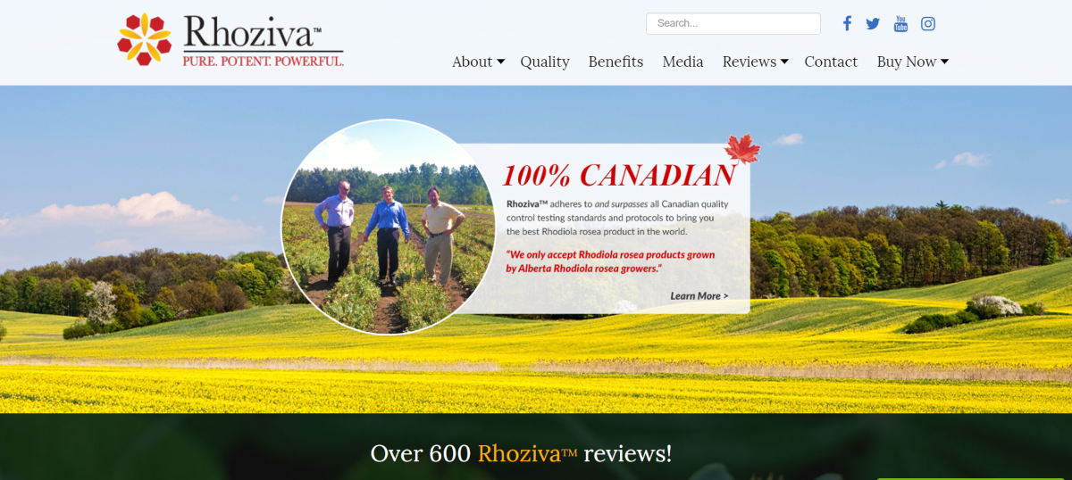 This is a screenshot taken from the rhoziva.com website where affiliates can link to their premium rhodiola rosea herbal supplements and earn a 5% commission.