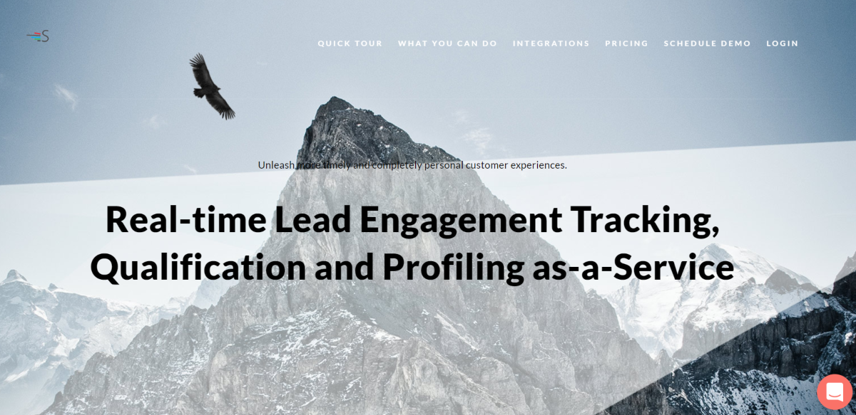 The image shows a screenshot taken from the Saleswingapp.com website that's used by markters for lead-tracking in real-time, qualifying prospects and compiling profile data.