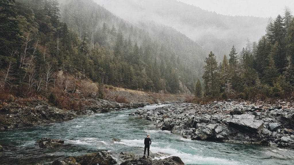 A man standing in front of a large river in the forest to represent survival affiliate programs