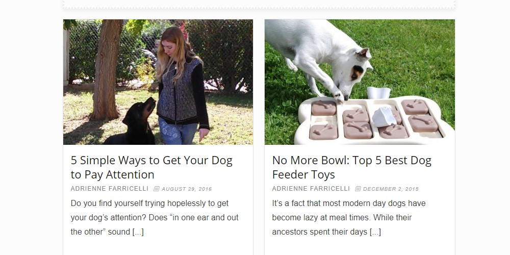 brain training for dogs home page
