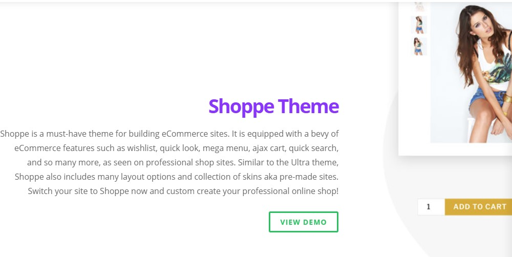 themify home page