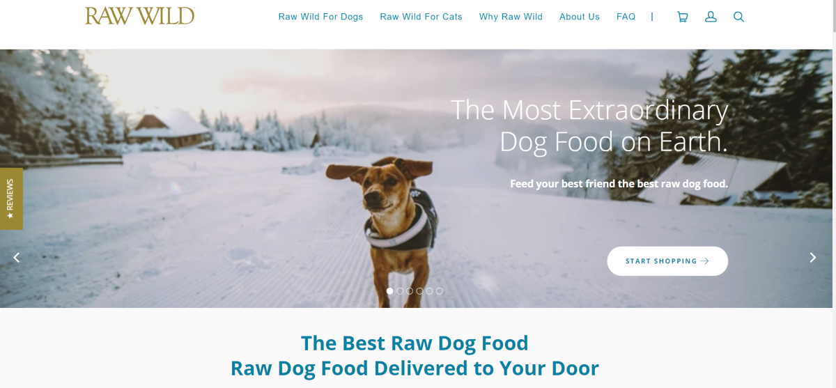"""This is a screenshot taken from the RawWild.com website showing a small dog wearing a wearing coat out excercising in the snow with a promotional message claiming the store has """"the most extraordinary dog food on earth""""."""