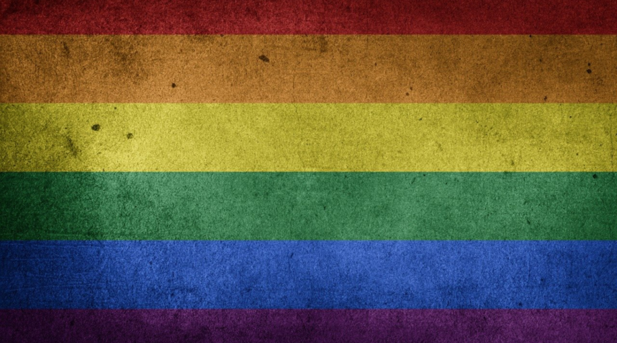 The image shows a photo of an LGBTQ flag showcasing the rainbow colors that gay focused businesses often use as part of their branding.
