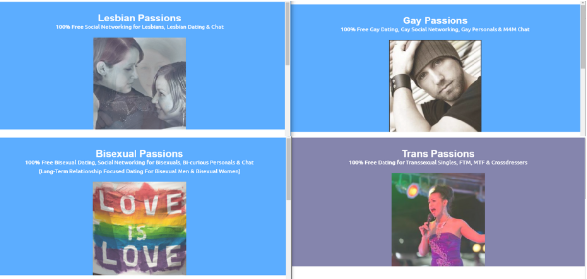 This is a 4-tile display screenshot showing four of Passion Networks homepages for Lesbian Passions, Gay Passions, Bisexual Passions and Trans Passions.