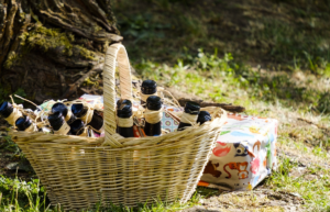 The image shows a straw basket wtih glass bottles placed in the shade under a tree in the countryside for a picnic.